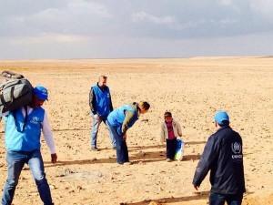 Toddler Desert